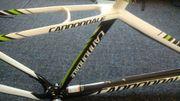 Mountainbike Carbon Rahmen Cannondale MTB