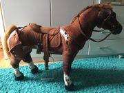 Spiel Pferd