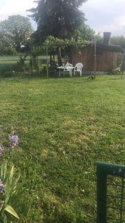 Garten schrebergarten