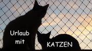 Ferien mit KATZEN im Bayerischen