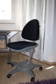Moll Maximo Forte Schreibtischstuhl