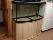 Aquariumset 260 liter mit Unterschrank