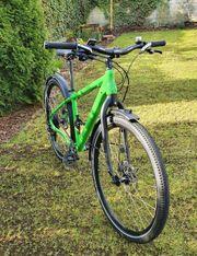 Herren Tourenrad Trekking-Bike Rh 48