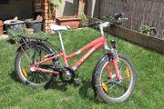 20 Zoll Kinder-Mountainbike Trek MT60