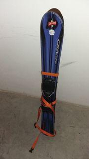 Blizzard Carvelino Ski Funcarver