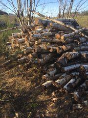 Brennholz Birke abgelagert