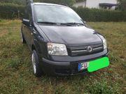 Fiat Panda Sparwunder Erdgas Benzin