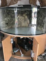 500 l Meerwasseraquarium Eckaquarium 110x110x70cm