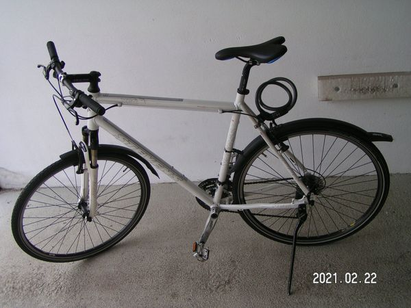 Stevens Cross X6C Herrenrad weiß