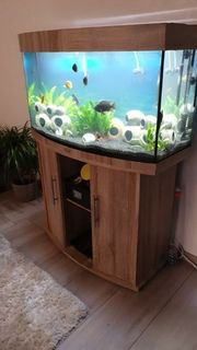 Juwel Aquarium 180 Liter LED