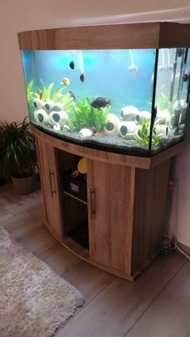 Juwel Aquarium 180 Liter LED und Zubehör