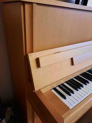 Klavier Seidl und Sohn 120