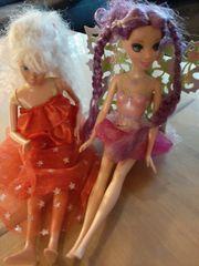 2 Barbies 1 Feenbarbie