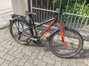 Fahrrad KTM Wild One 24
