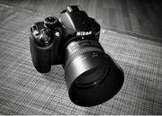 Fotograf für Portrait Paar Familie