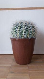 künstlicher Kaktus 45cm hoch