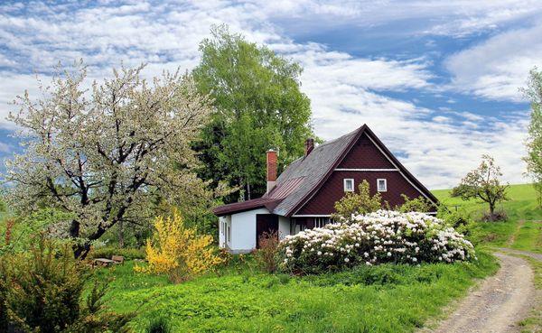 Suche Baugrundstück oder Haus in