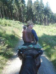 Kurs Kartenlesen Reiten Pferd