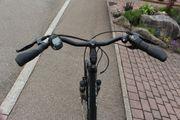 E-Bike Fabr Falter P9 1