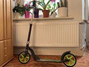 Firefly Roller