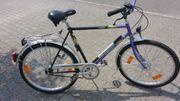 26 WINORA Herren-Fahrrad 5-Gang