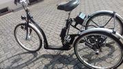Pfau-Tec Therapierad Dreirad Elektrofahrrad
