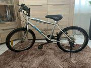 Mountainbike Silber 20 Zoll 12-Gang