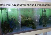 Aquarium-Universal-Trennwand -für- Aquarien