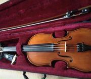 Violine 3 4