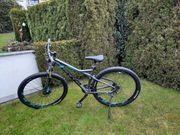 TOP Damen Fahrrad