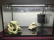 Aquarium Filter LED-Leuchte zwei Deko