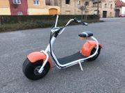 Citycoco E-Scooter 1000W 60V