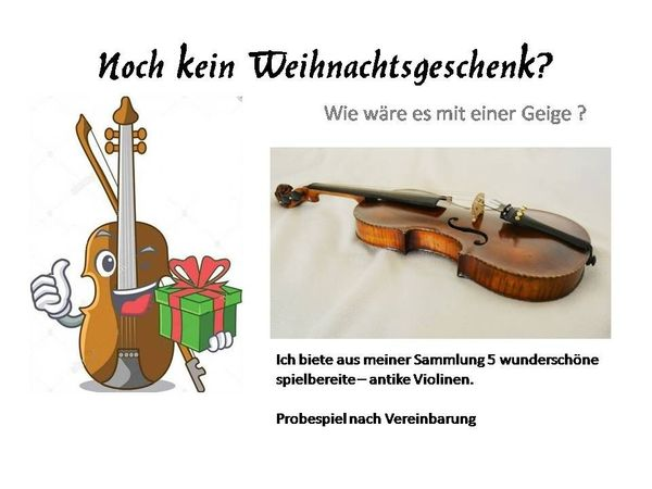 Geigensammlung zu verkaufen