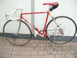 Mountain-Bikes, BMX-Räder, Rennräder - Pinarello Klassiker Rennrad RH 54