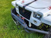 Buggy 800 2WD seilwinde Lightbar