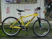 Trekking - Fahrrad von KAIKOURA 21