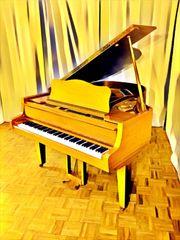 Flügel Klavier Schimmel 174 Udo