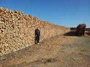 Holz trocken Brennholz 25 cm