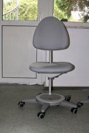 Moll Schreibtischstuhl Maximo Forte