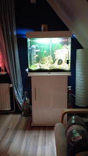 Juwel aquarium mit allem drum