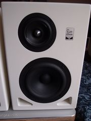 EapPleasure 1 1 Studiomonitore Kompaktlautsprecher