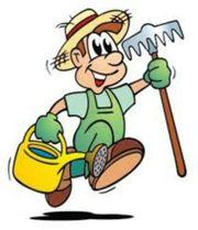 Hilfe für leichte Gartenarbeiten gesucht