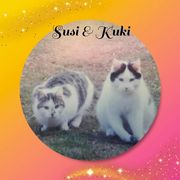 Kater Kuki und Katze Susi