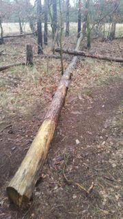 Holz zum selber sägen