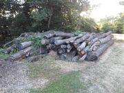 Brennholz - Polterholz
