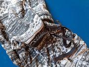 Neuwertiges Sweat-Kleid S Oliver Größe