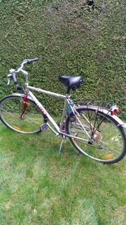 Herren Fahrrad - 7 Gang - Gut