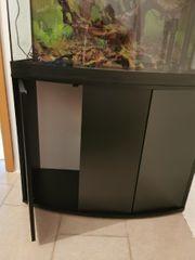 Aquarium von Fluval 180 Liter