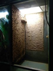 Terrarium Hochterrarium 40x40x80