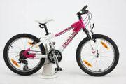Damen Mädchen Fahrrad Bulls